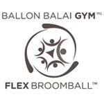 Ballon Balai GYM