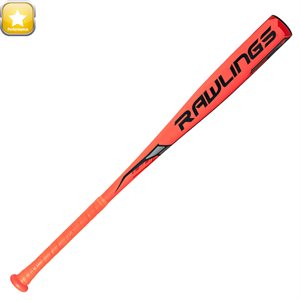 Bâton de baseball SR